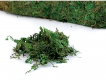 Decorative Moss 730 g