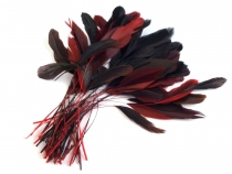 Decorative Rooster Feather length 13-18 cm