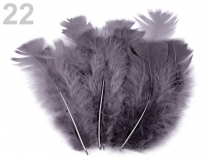Coloured Turkey Feathers length 11-17 cm