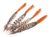 Decorative Pheasant Feather length 22-25 cm