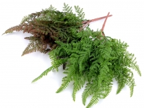 Artificial Fern for Floral Arranging