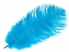 Ostrich Feather length approx. 20-25 cm