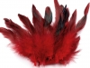 Decorative Hen Feathers length 15 cm