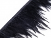 Feather Trim with rooster feathers width 12 cm