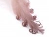 Curly Goose Feathers length 13-18 cm